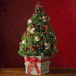 5308-1530_28783-winter-forest-mini-christmas-tree